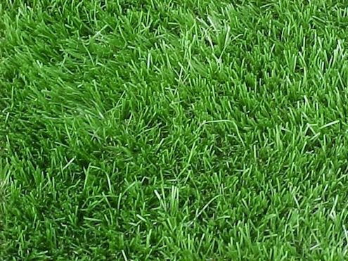 Grass Alternatives - Artificial Turf