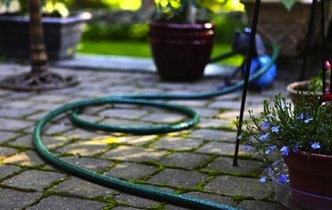 Choosing a Garden Hose