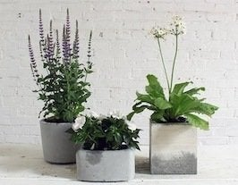 Concrete planters thumb