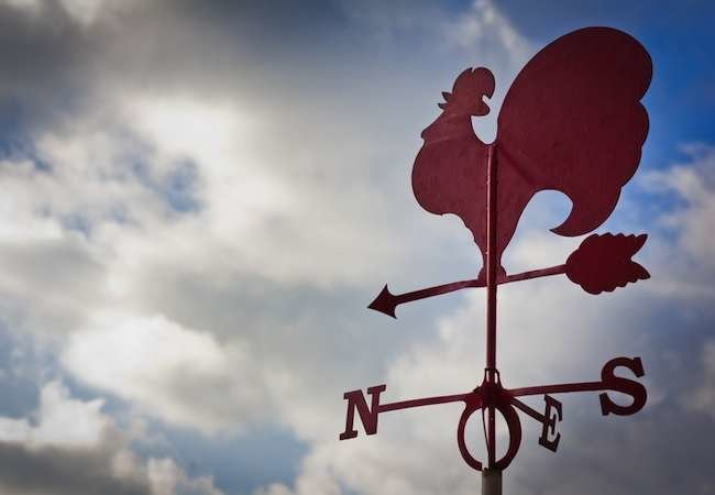 11 Weather Vanes to Point You in the Right Direction