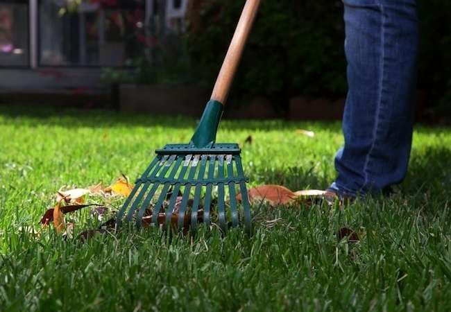 5 Rakes Every Homeowner Should Know