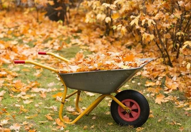 Wheelbarrows to Lighten Your Load