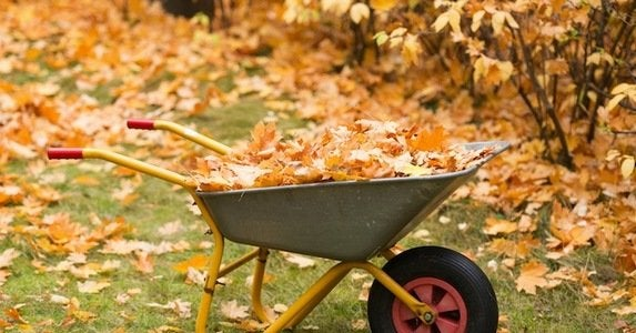 10 wheelbarrows to lighten your load