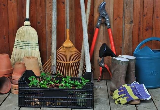 9 Essential Tools for Every Gardener