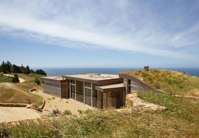 Trending Now:  Green Roofs