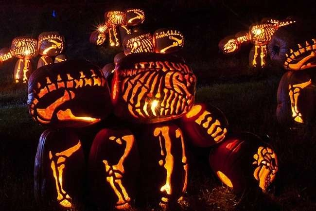 7 Not-to-be-Missed Pumpkin Festivals Around the Country