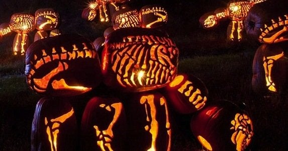 7 not to be missed pumpkin festivals around the country