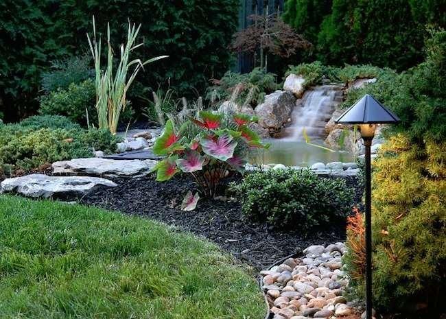 Make a Splash! 10 Stunning Backyard Ponds to Enhance Any Landscape
