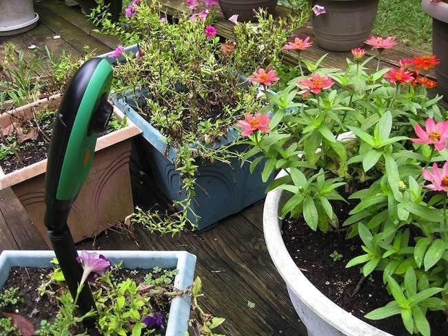 New & Notable: 10 Gadgets to Tech Out Your Garden