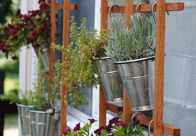 Diy Vertical Garden 10 Ways To Grow Up Bob Vila