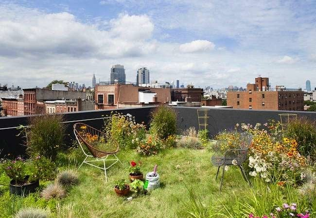 10 Rooftop Gardens That Bring Gardening to New Heights