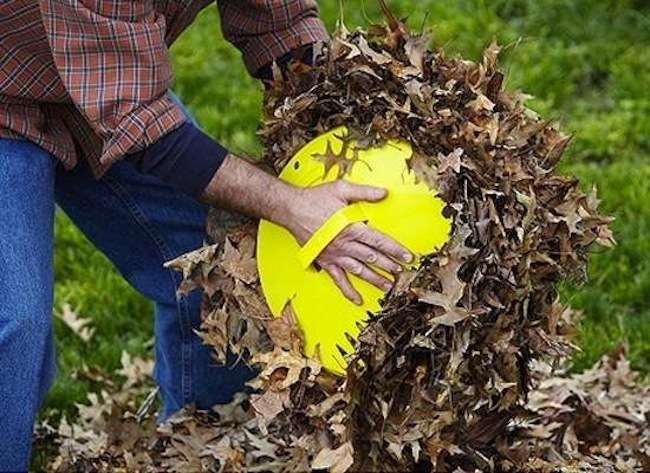Editors' Picks: 7 Tools to Wage War Against Leaves
