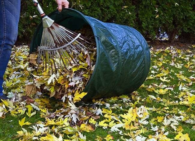 Winterize Your Lawn and Garden in 7 Steps