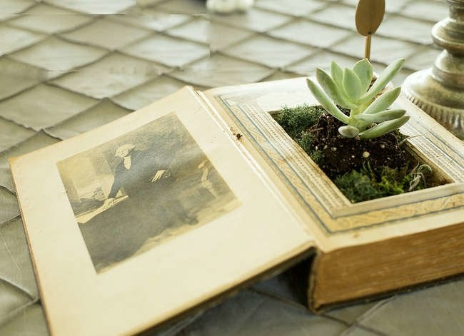 10 Totally Unexpected Things to Remake as Planters