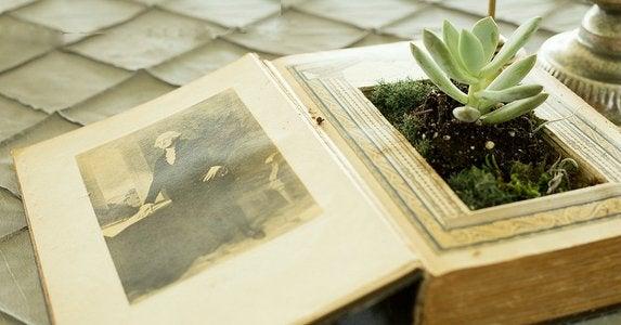 Planter_book