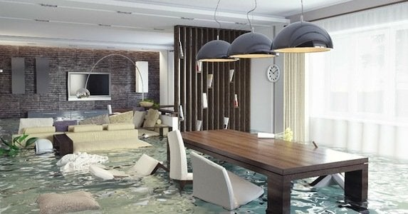 Flood insurance   cover
