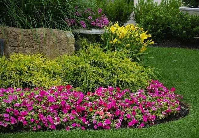 Don't Make These 8 Mistakes in Your Front Yard