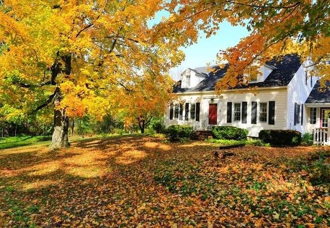 7 Fall Fix-Ups to Do for a Winter-Ready Home