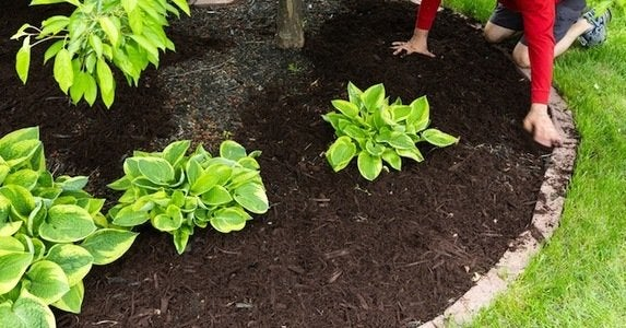 Better garden cover