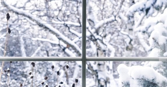 Windows in winter