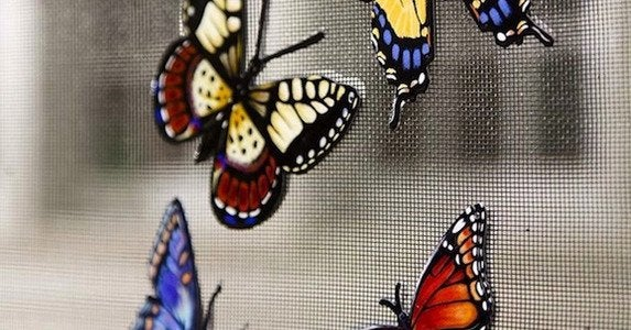 Butterfly screen magnets