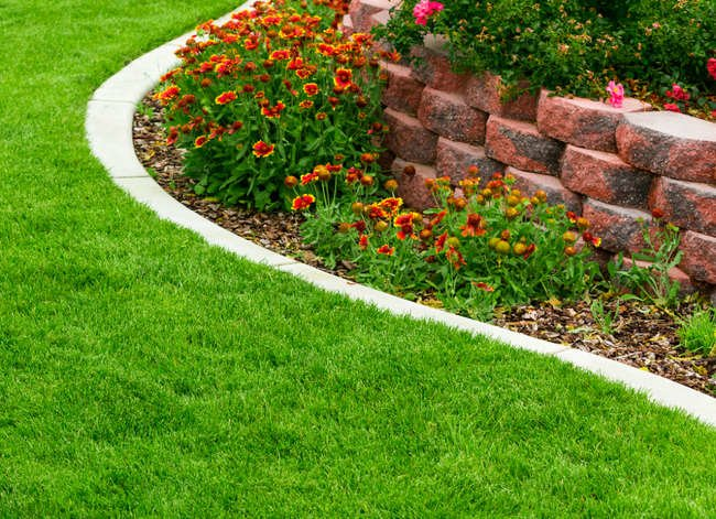 11 Ways Landscaping Can Save You Money