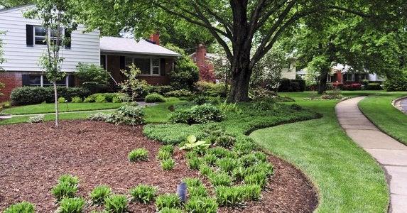 Mulch-garden-beds