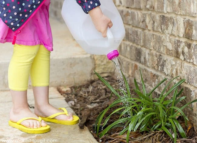 10 Home Maintenance Miracles You Already Own