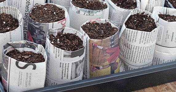 Newspaper-seed-pots