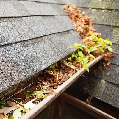 5 Ways Clogged Gutters Are Destroying Your Home