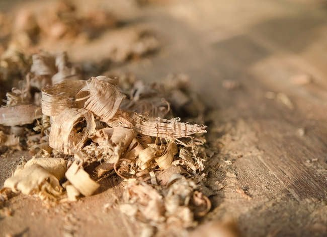 10 Things You Didn't Know Sawdust Can Do