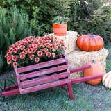 13 Easy DIYs for Instant Autumn Curb Appeal