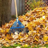 10 Leaf-Raking Lessons No One Ever Taught You