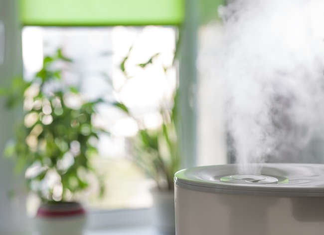 7 Reasons Every Home Needs a Humidifier