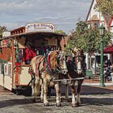 35 Postcard-Perfect Towns to Visit for the Holidays