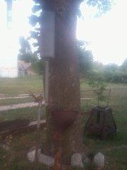Img 20120711 180103