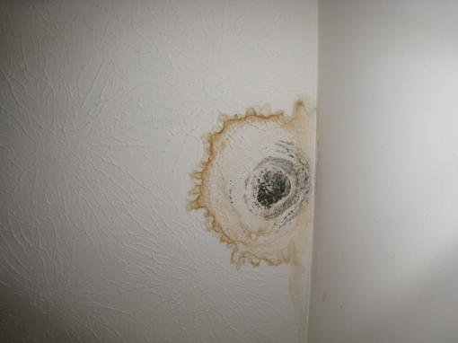 Ceiling Water Spots How Do I Determine Leak Location And