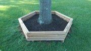 Hexagonal tree ring