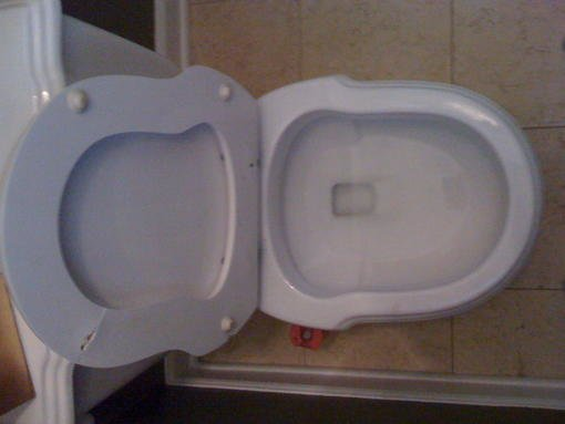 10669 replacement toilet s
