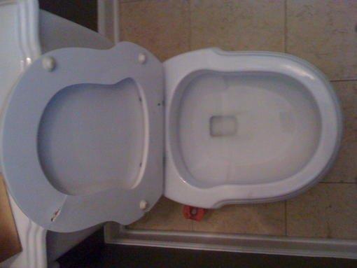 Replacement Toilet Seat For Laufen Hampton Victoria