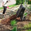 Cover Plant Beds for Winter