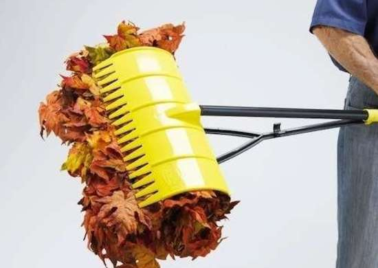 Clean Up Fall Leaves