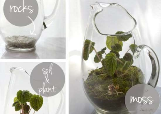 How to Make a Glass Terrarium - How to Build a Terrarium