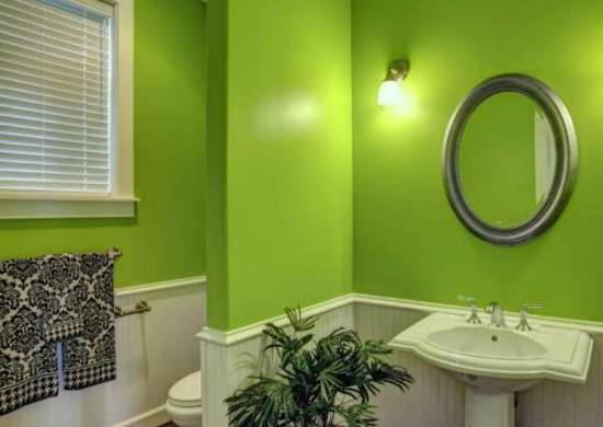 Green bathroom paint colors for dark rooms 9 perfect for Green bathroom paint colors