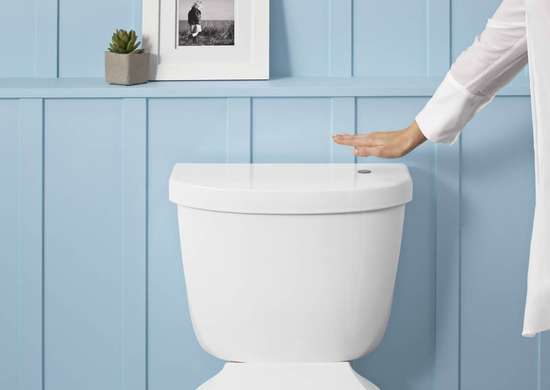 Touchless Flush Toilet
