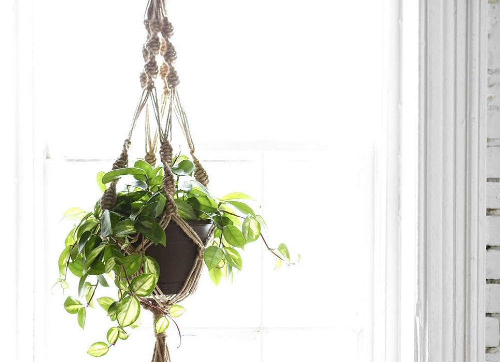 Hangingplanter urbanoutfitters