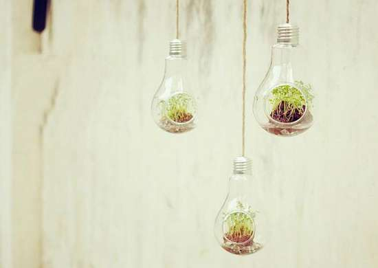 Upcycled Lightbulb