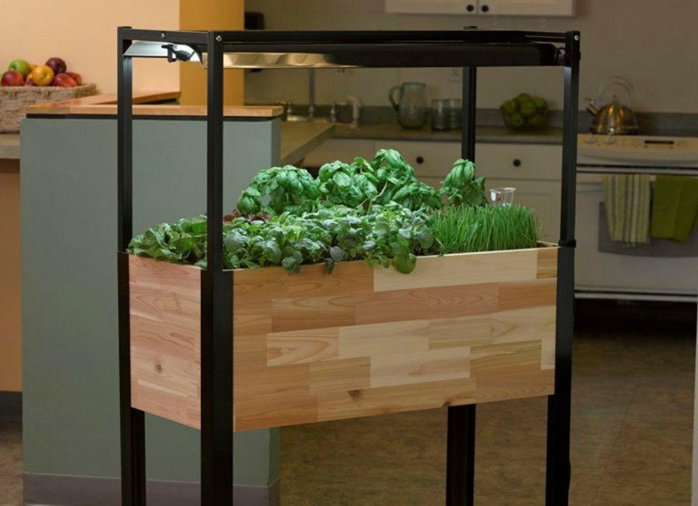 Smartplanter_kitchengarden