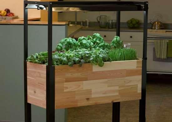 Smartplanter kitchengarden
