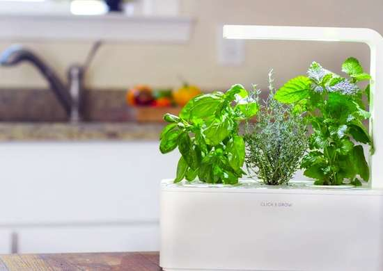 Click_and_grow_planter